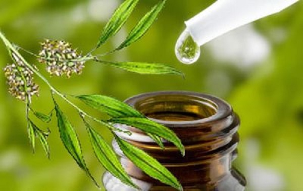 tea-tree-oil-awakeandlivingDOTcom